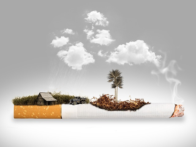 Cigarette, Removal, Plantation, Tobacco, Smoke, Smoking