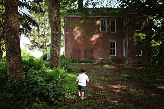 Alone, Boy, Outdoors, House, Home, Toddler, Backyard