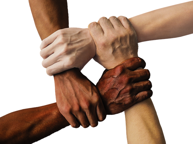 Hand, United Hands, United, Together, People, Unity