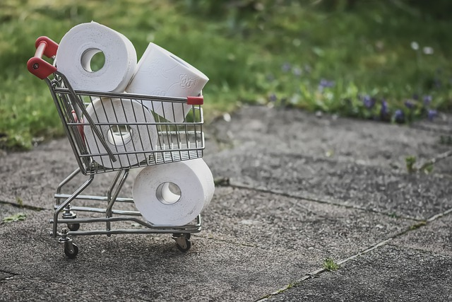 Shopping, Toilet Paper, Covid-19, Hamsters, Pandemic
