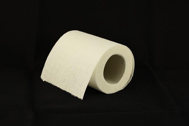 Toilet Paper, Toilet Roll, Tissue, Bathroom, Toilet