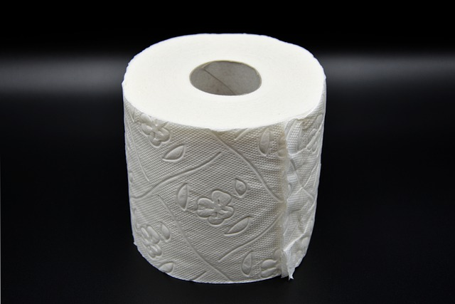 Toilet Paper, Hygiene, Loo, Role, Wc, Toilet, Paper