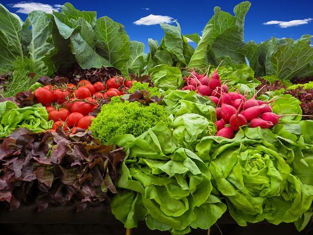 Vegetables, Tomatoes, Radishes, Salad, Food, Garden