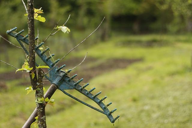 Rake, Tool, Garden, Gardening, Gardening Tools