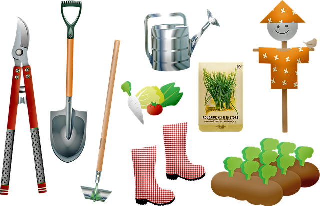 Garden, Tools, Plants Growing, Seeds, Shovel, Gardening