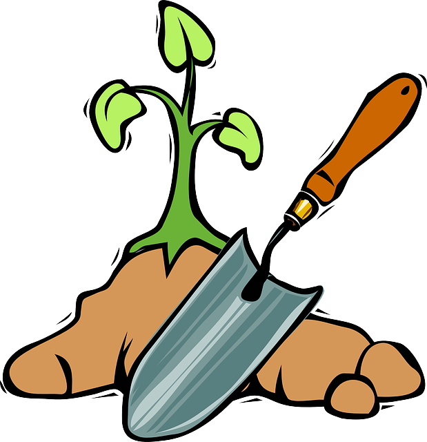 Spade, Tools, Plant, Garden, Soil, Digging, Growing
