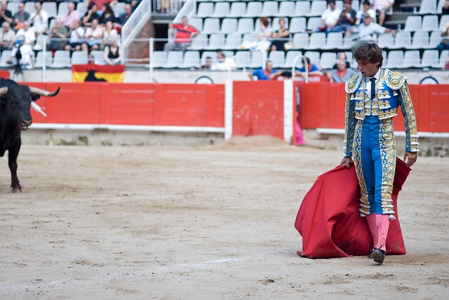 Torero, Arena, Spanish, Bullfight, Bullfighter, Pride