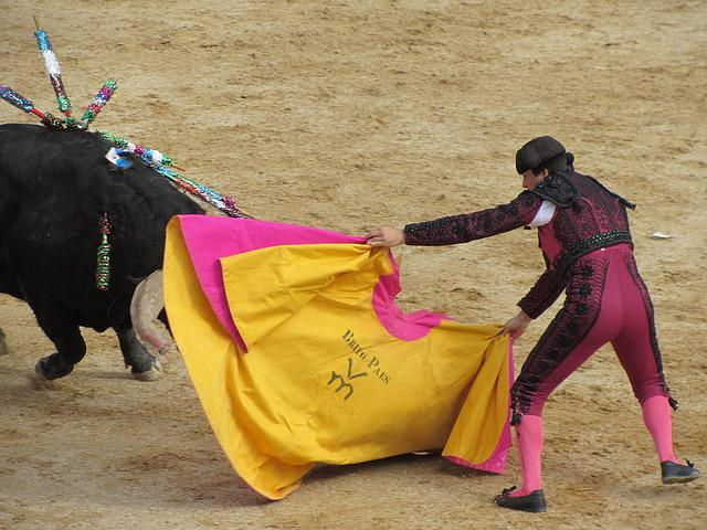 Bull Fighting, Torero, Portugal, Bullfighter