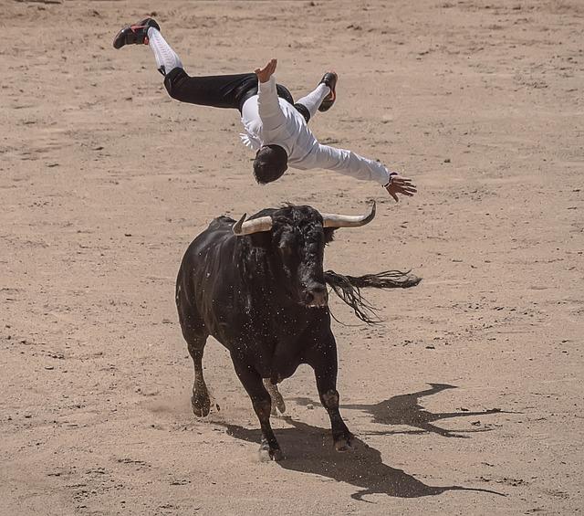 Trimmers, Torero, Bullfighters, Sales, Madrid, Bulls