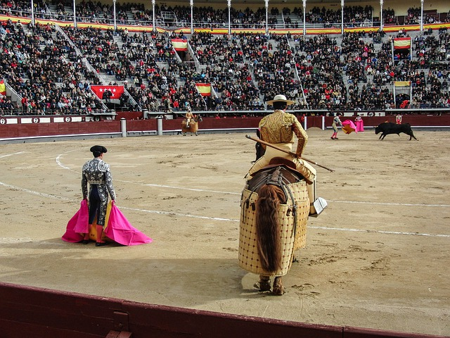 Toro, Torero, Plaza, Spain, Matador, Bullfights