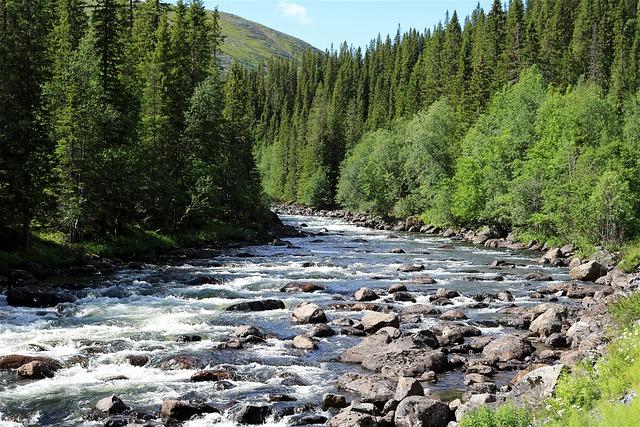 Torrent, Nature, Water, Water Running, Beautiful