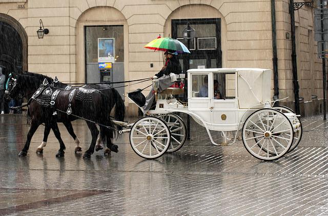 Cab, Four Of A Kind, Horses, Transport, Tourism, Tour