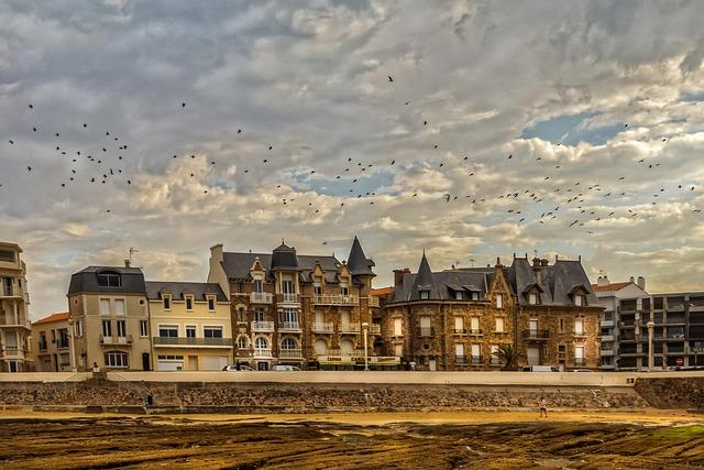 France, Vendée, Sky, Seagulls, Tourism, Bird