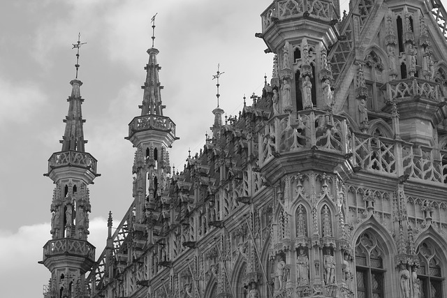 Town Hall, Leuven, Gothic Architecture, Architecture