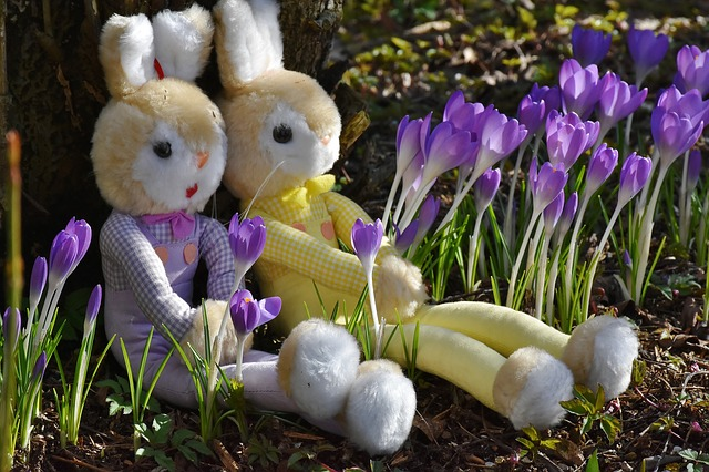 Rabbit, Crocus, Easter, Toys, Deco, Spring, Flowers