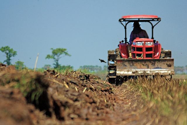 Vehicle, Tractor, Pushcart, Farmer, Tiller