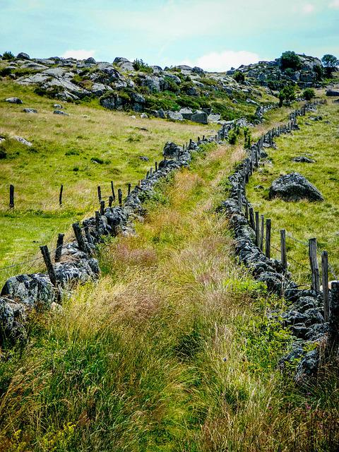 Path, Trail, Aubrac, Mountain Path, Hiking Trail