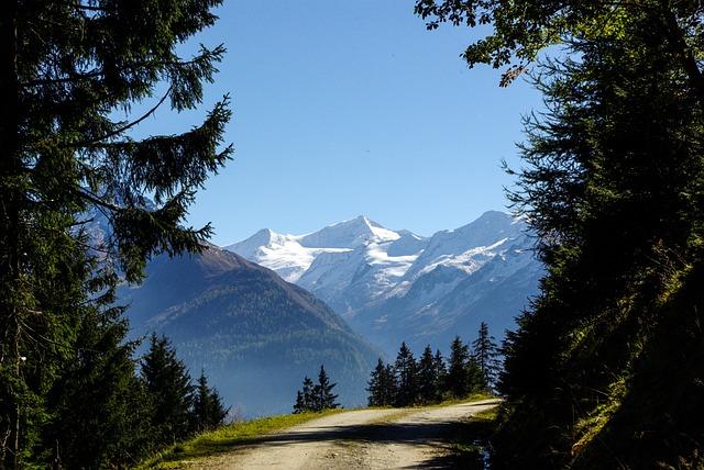 Autumn, Away, Trail, Landscape, Forest, Großvenediger