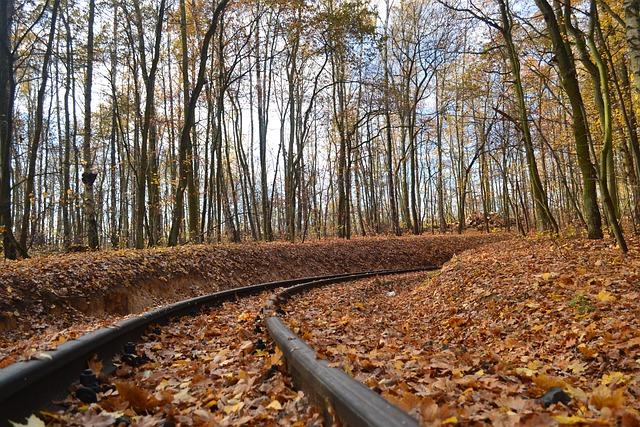 Tor, Narrow-gauge Track, Autumn, Old, Train, Rails