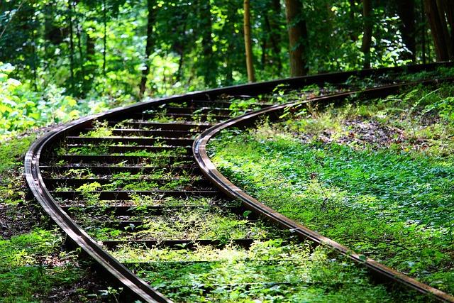 Track, Rail, Forest, Railroad Tracks, Railway, Train