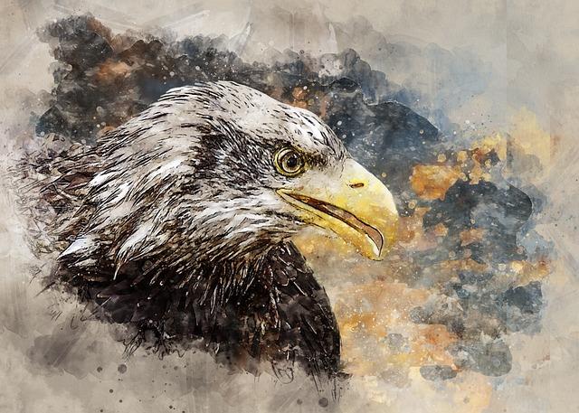 Adler, White Tailed Eagle, Training, Raptor