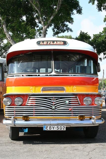 Bus, Traffic, Road Transport, Transport