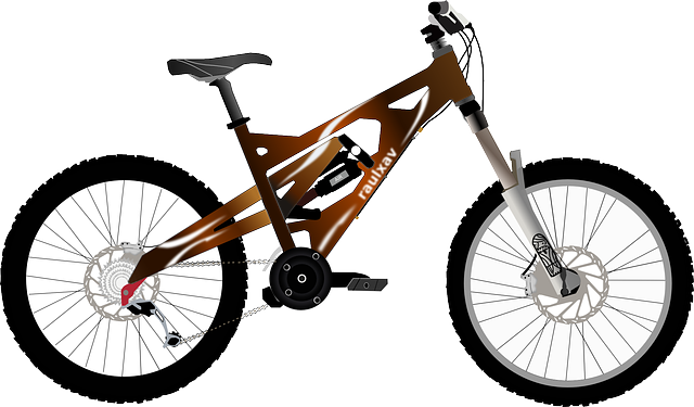 Bicycle, Wheels, Transport, Cycle, Sport, Lifestyle