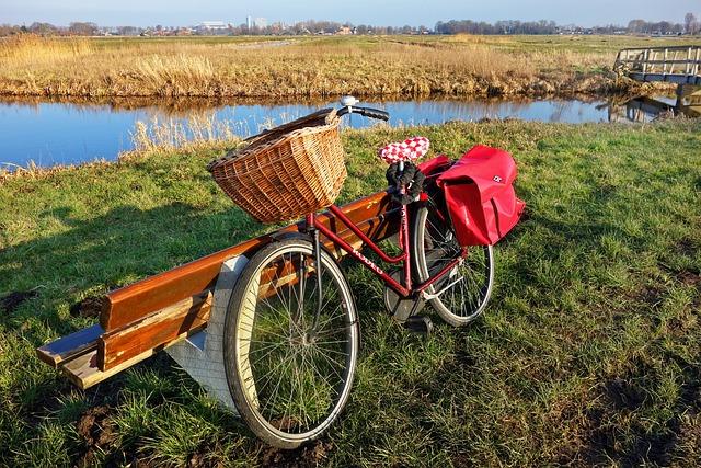 Bicycle, Vehicle, Transportation, Bicycle Wheel, Wheel