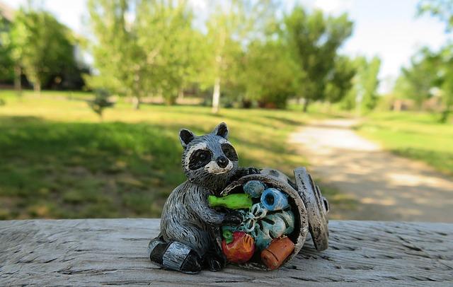 Raccoon, Garbage, Animal, Mammal, Trash, Cute, Wildlife