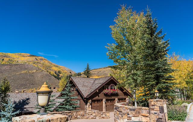 Vail, Colorado, Foliage, Mountains, Nature, Usa, Travel