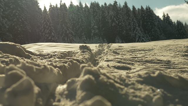 Nature, Landscape, Travel, Waters, Snow, Away, Winter