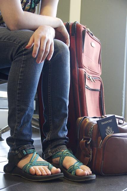 Travel, Luggage, Airport, Waiting, Passport, Traveler