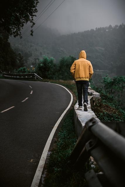 Travel, Yellow, Wanderlust, Jacket, Walking, Woods