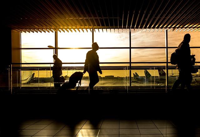 Airport, Man, Travel, Traveler, Passenger, Person