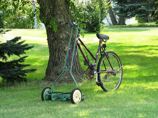 Yard, Bike, Lawn Mower, Tree, Mowing, Summer, Backyard