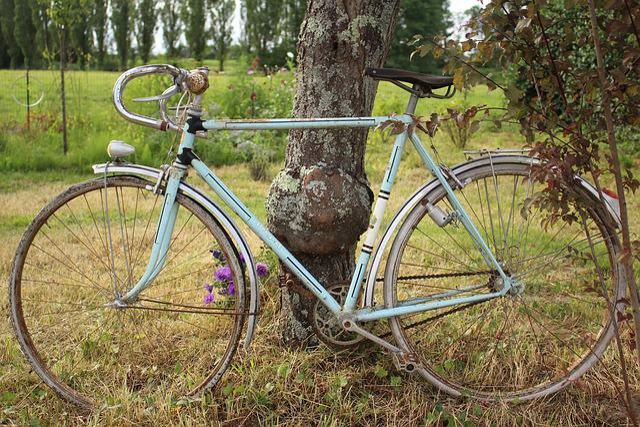 Bike, Sky Blue, Freedom, Nature, Meadow, Tree, Green