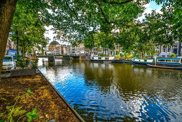 Amsterdam, Bridge, Canal, Shade, Tree, Water