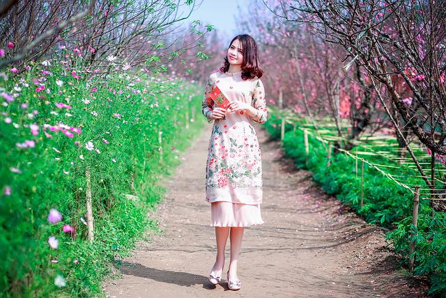 Nature, Outdoors, Flower, Park, Tree, Grass, Beautiful