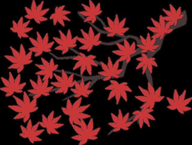 Maple Leaf, Maple, Leaf, Autumn, Red, Fall, Tree, Plant