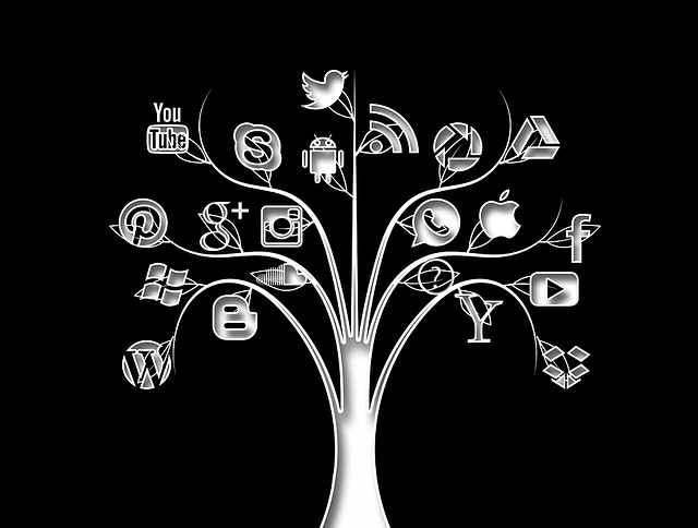 Social Media, Tree, Structure, Networks, Internet