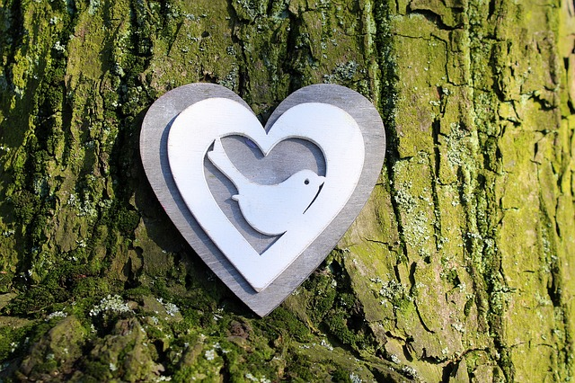 Heart, Nature, Tree, Composition, Ornament, Decoration