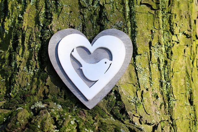 Heart, Nature, Tree, Composition, Ornament, Decoration