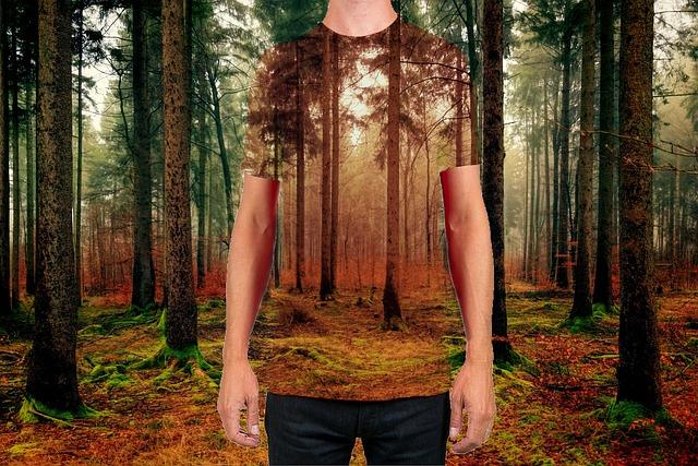 Wood, Nature, Park, Tree, Outdoors, Man