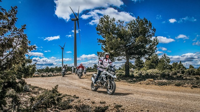 Enduro, Motorcycle, Group, Tree, Nature, Outdoors, Sky