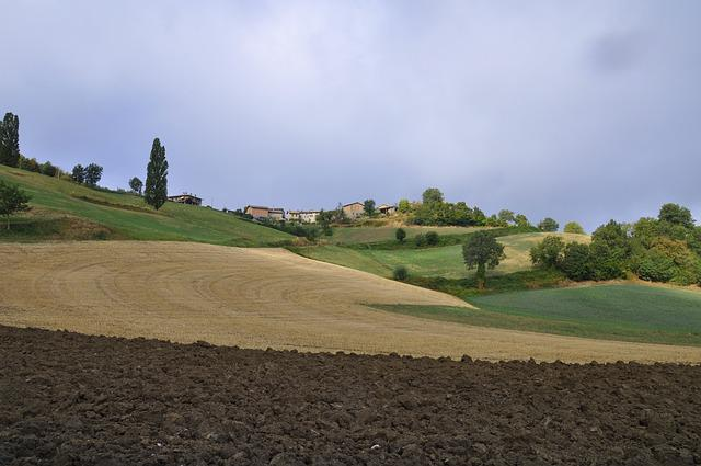 Landscape, Nature, Panoramic, Tree, Campaign, Plowed