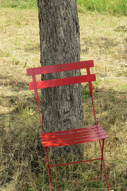 Chair, Tree, W, Rest, Atmosphere, Seat, Mood, Tolbiac