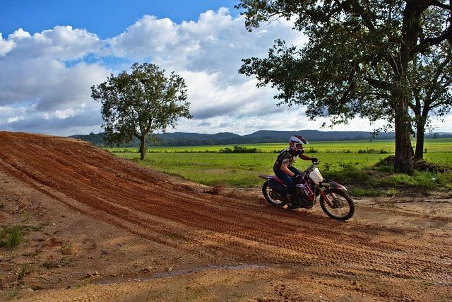 Motocross, Landscape, Nature, Tree, Sky, Road, Bike