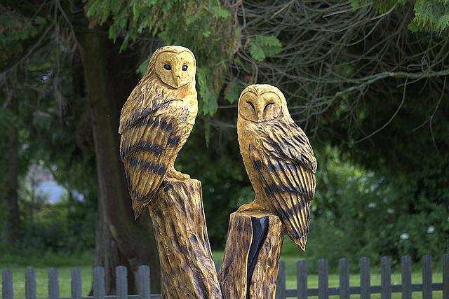 Chainsaw, Sculpture, Wood, Owls, Carving, Carved, Tree