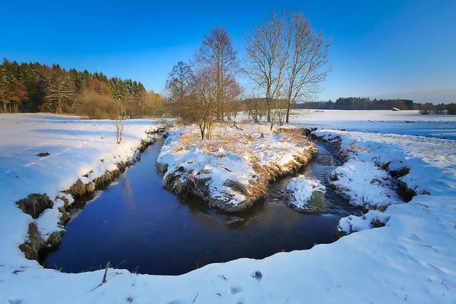 Snow, Waters, Nature, Winter, Tree, Bach, River