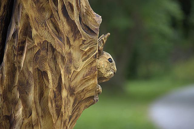 Wood Carving, Squirrel, Tree, Sculpture, Chainsaw, Wood